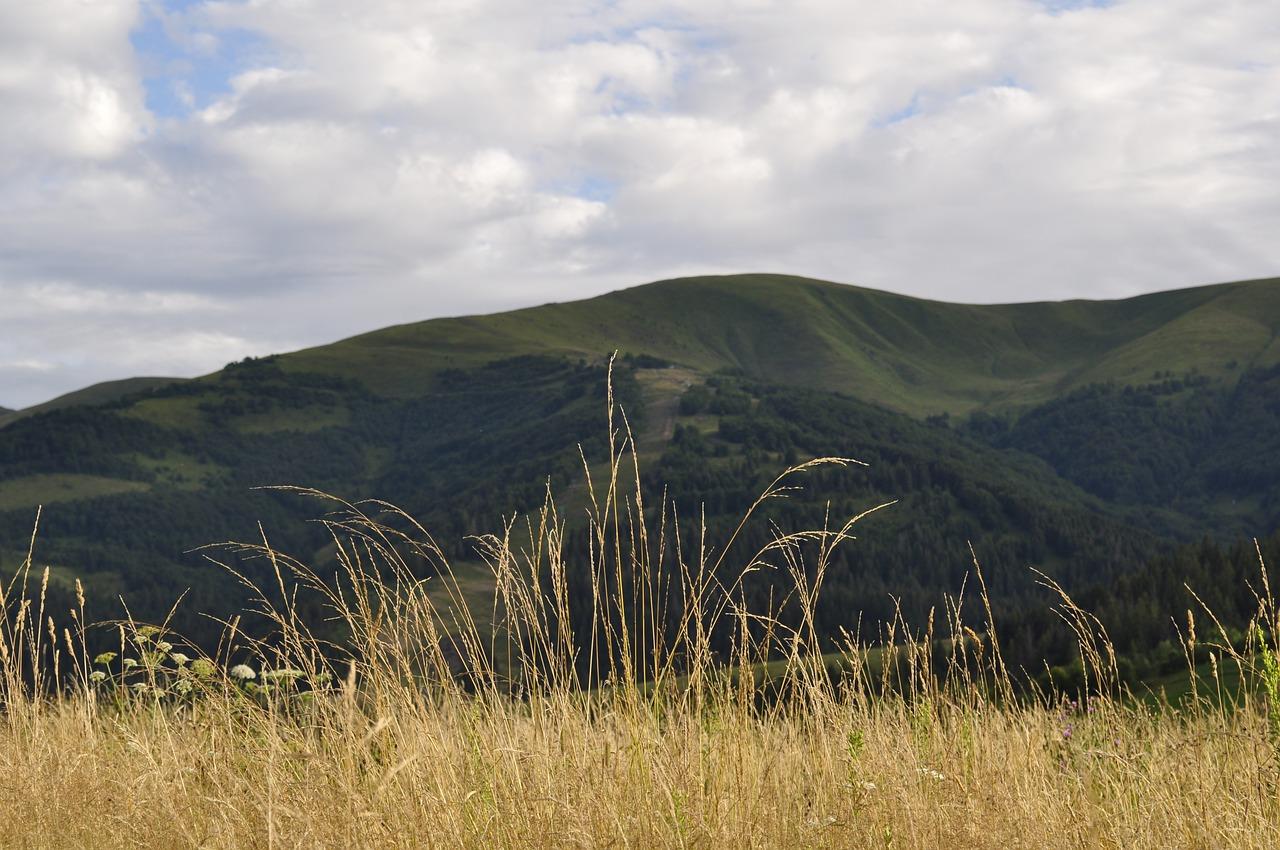 Carpathian hills