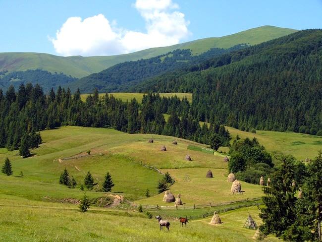Пейзажи летних Карпат