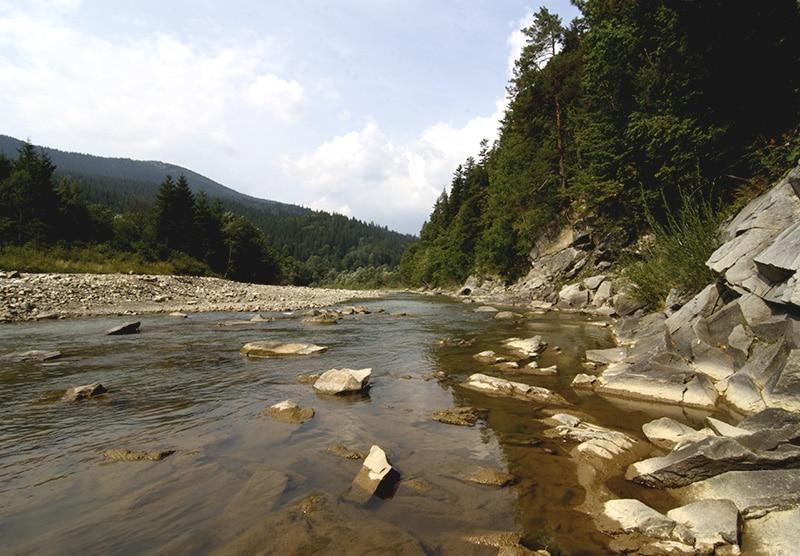 Карпатский национальный парк летом