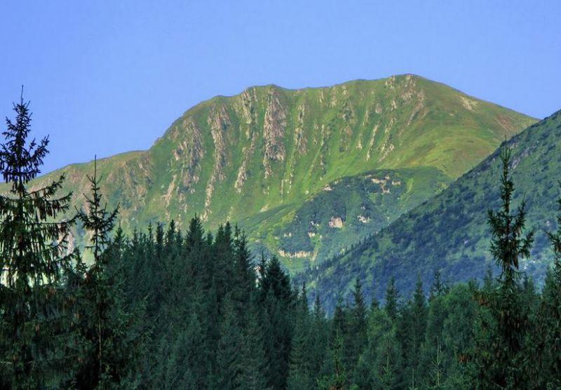Гора Ребра