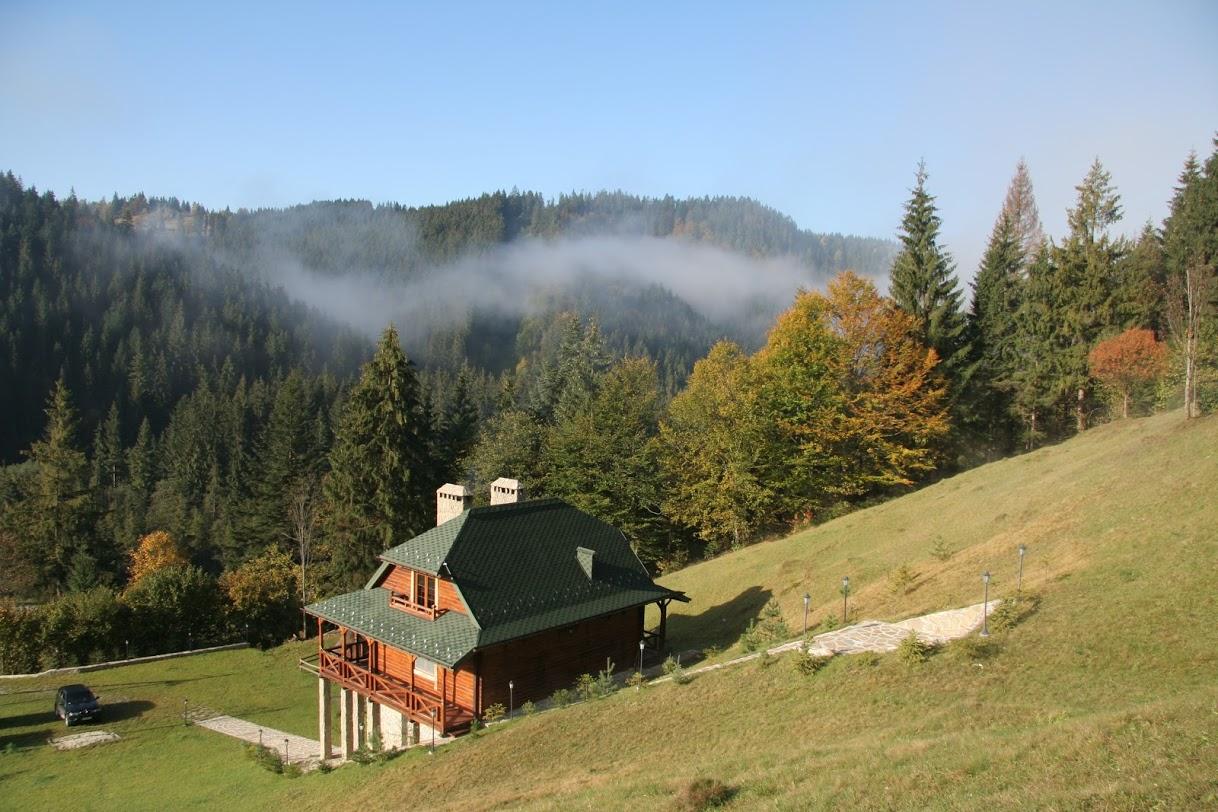 Карпатский хвойный лес