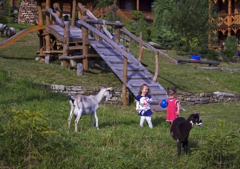 Мини-ферма – отличное развлечение для детей