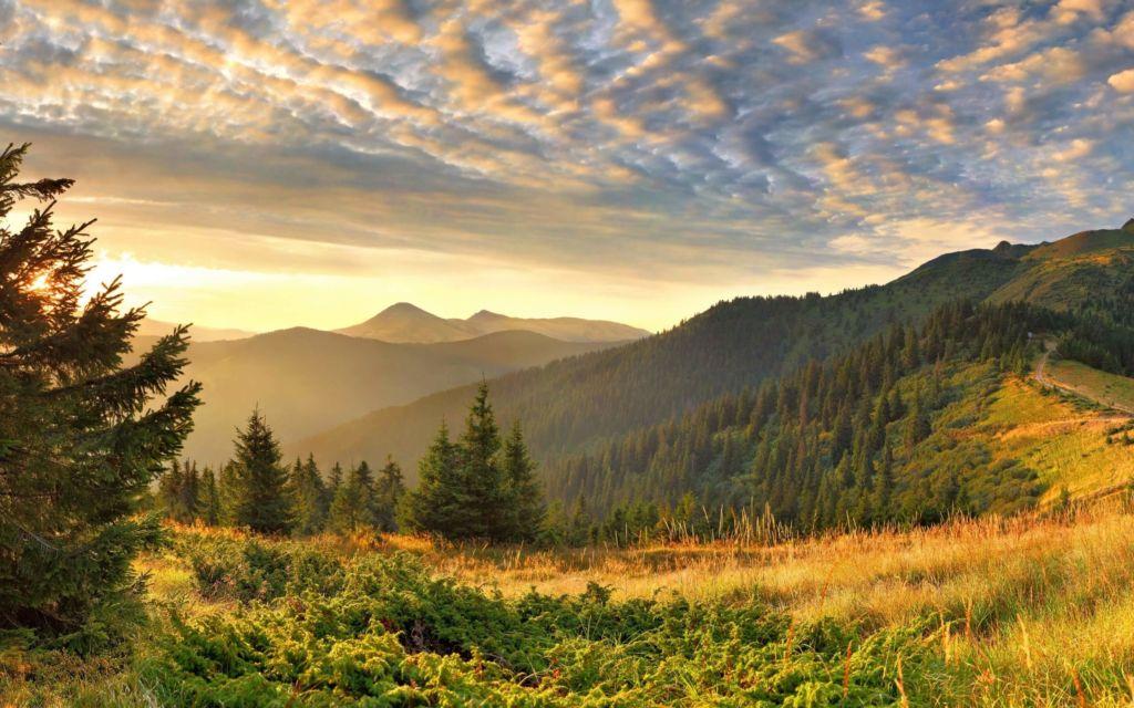 Карпатская природа