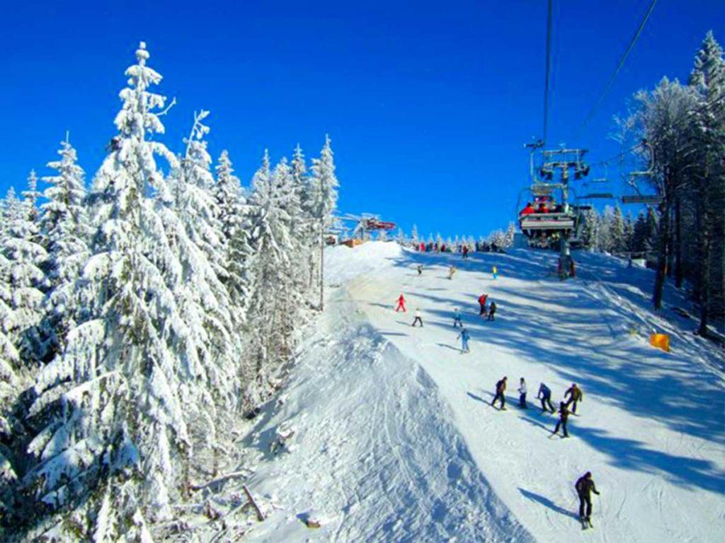 Развлечения в Карпатах зимой