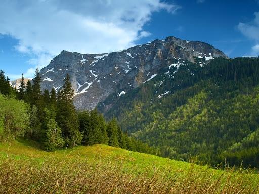 Вид на горы в Карпатах