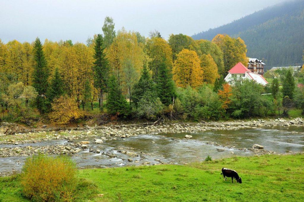 Река в Татарове