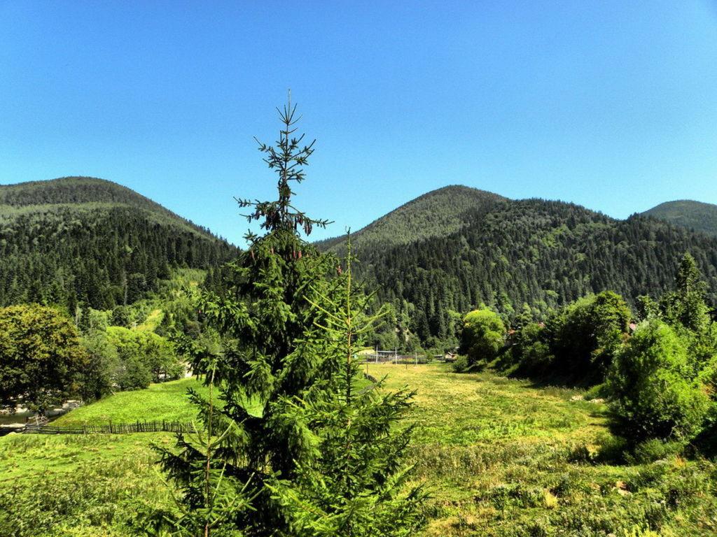 Природа Татарова